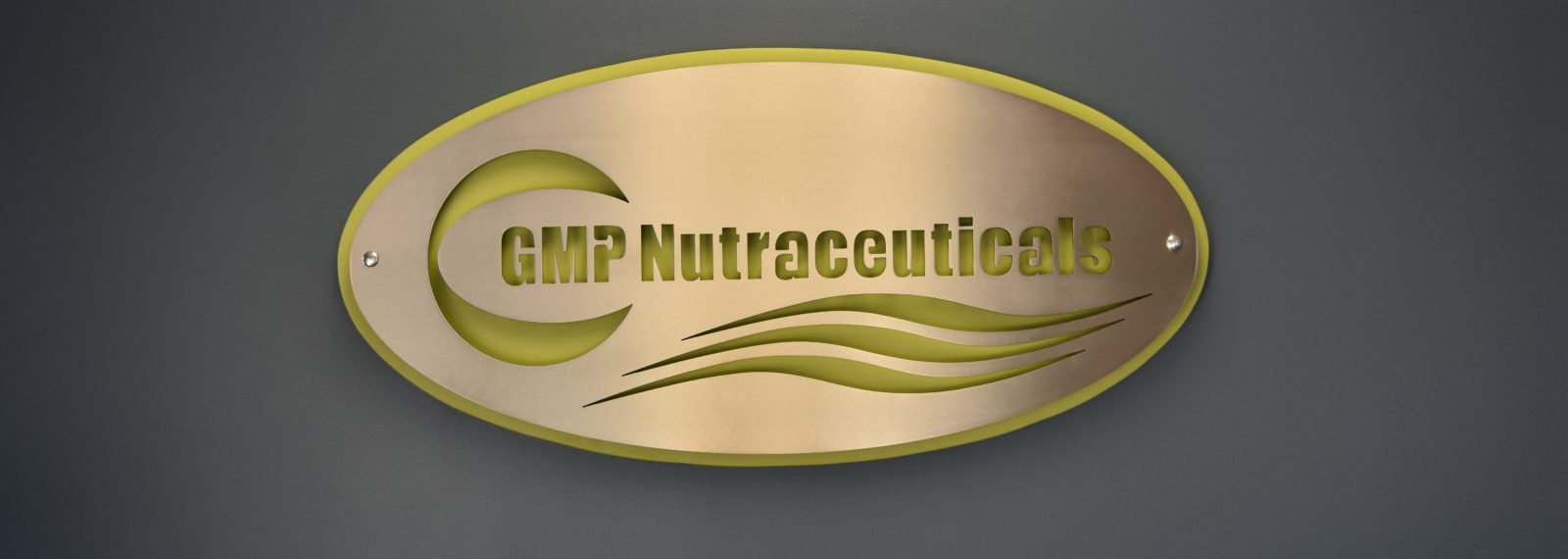 GMP Nutraceuticals   The Leader in Whey Protein